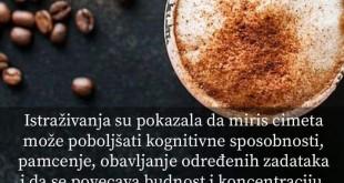 FB_IMG_1549539468316
